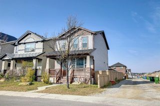 Photo 23: 3 Skyview Springs Crescent NE in Calgary: Skyview Ranch Detached for sale : MLS®# A1153447
