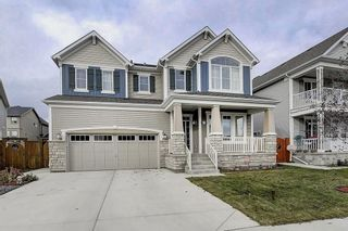 Photo 2: 132 WATERLILY Cove: Chestermere Detached for sale : MLS®# C4306111