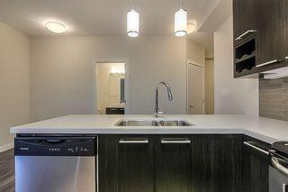 Photo 12: 302 10418 81 Avenue in Edmonton: Zone 15 Condo for sale : MLS®# E4228090