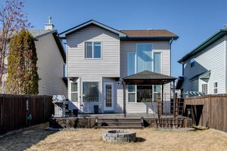Photo 3: 121 Bridlewood Court SW in Calgary: Bridlewood Detached for sale : MLS®# A1096273