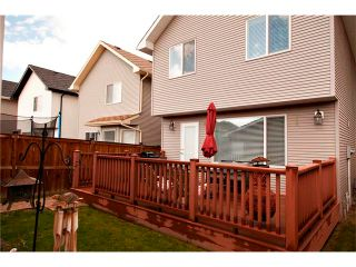 Photo 21: 270 CRANBERRY Close SE in Calgary: Cranston House for sale : MLS®# C4022802