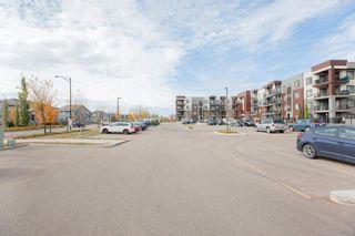 Photo 34: 407 1004 ROSENTHAL Boulevard in Edmonton: Zone 58 Condo for sale : MLS®# E4248881