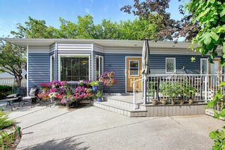 Photo 36: 111 Hillgrove Crescent SW in Calgary: Haysboro Detached for sale : MLS®# A1022823
