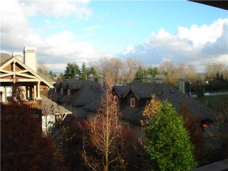 "Photo 14: 306 625 PARK Crescent in New Westminster: GlenBrooke North Condo for sale in ""Westhaven"" : MLS®# V1040934"