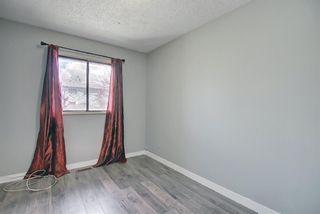 Photo 25: 455 Falconridge Crescent NE in Calgary: Falconridge Detached for sale : MLS®# A1103477