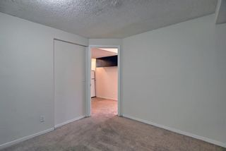 Photo 38: 66 Erin Green Way SE in Calgary: Erin Woods Detached for sale : MLS®# A1094602