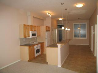 Photo 4: #321 10147 112 ST NW: Edmonton Condo for sale : MLS®# E4045922