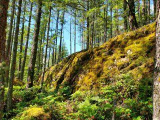 Photo 25: Lot 48 FLINT Road: Keats Island Land for sale (Sunshine Coast)  : MLS®# R2460854