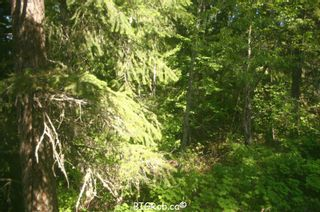 Photo 10: 4827 Goodwin Road in Eagle Bay: Vacant Land for sale : MLS®# 10116745