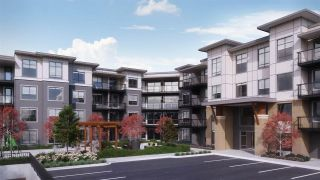 """Photo 17: 211 20356 72B Avenue in Langley: Willoughby Heights Condo for sale in """"Parc Central Gala"""" : MLS®# R2607013"""