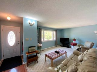 Photo 19: 101 Mayday Crescent: Wetaskiwin House for sale : MLS®# E4253724