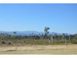 """Photo 15: LOT 6 BELL Place in Mackenzie: Mackenzie -Town Land for sale in """"BELL PLACE"""" (Mackenzie (Zone 69))  : MLS®# N227298"""
