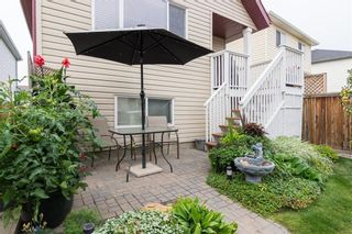 Photo 30: 172 COPPERFIELD Rise SE in Calgary: Copperfield Detached for sale : MLS®# C4201134