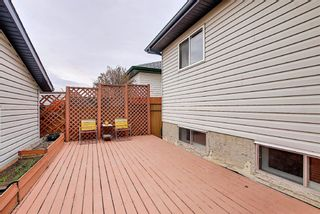 Photo 44: 1077 Country  Hills Circle NW in Calgary: Country Hills Detached for sale : MLS®# A1104987