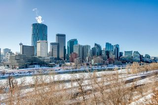 Photo 19: 202 414 MEREDITH Road NE in Calgary: Crescent Heights Apartment for sale : MLS®# A1056974
