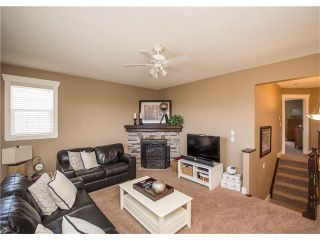 Photo 21: 34 CHAPALA Court SE in Calgary: Chaparral House for sale : MLS®# C4108128