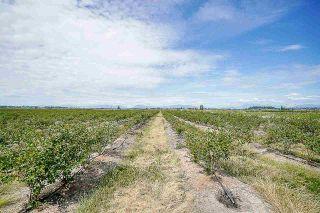 Photo 2: 16397 40 Avenue in Surrey: Serpentine Land for sale (Cloverdale)  : MLS®# R2586709