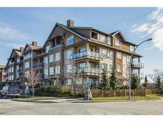 Photo 1: 310 250 SALTER Street in New Westminster: Queensborough Home for sale ()  : MLS®# V1046749