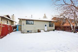 Photo 27: 1244 Falconridge Drive NE in Calgary: Falconridge Detached for sale : MLS®# A1067317