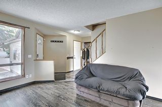 Photo 4: 23 Applecrest Court SE in Calgary: Applewood Park Detached for sale : MLS®# A1079523