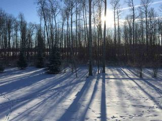 Photo 7: 26429 TWP RD 635: Rural Westlock County Manufactured Home for sale : MLS®# E4204957