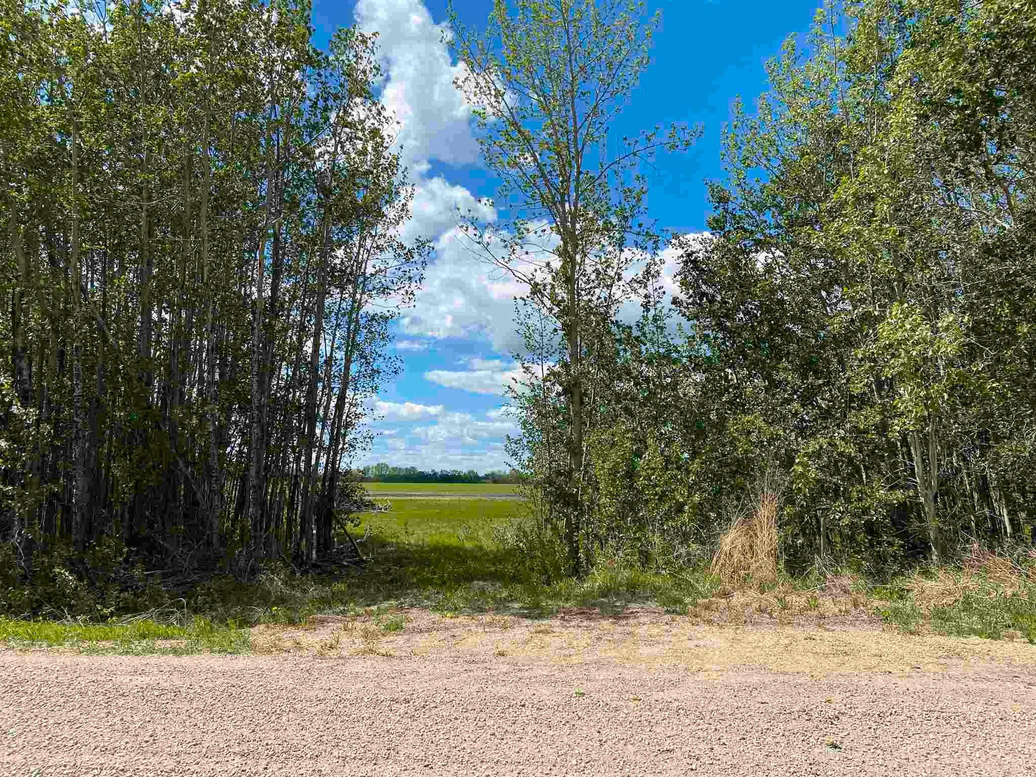 Main Photo: NE 34-49-27-W4 none: Rural Leduc County Rural Land/Vacant Lot for sale : MLS®# E4246771