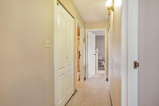 """Photo 11: 203 5224 204 Street in Langley: Langley City Condo for sale in """"SOUTH WYNDE COURT"""" : MLS®# R2600463"""