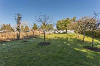 Photo 19: 29400 SUNVALLEY Crescent in Abbotsford: Aberdeen House for sale : MLS®# R2262605