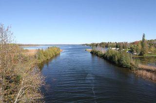 Photo 7: Lt 48 Centennial Park Road in Kawartha Lakes: Rural Eldon Property for sale : MLS®# X5380435