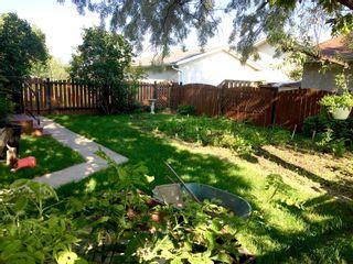 Photo 20: 14111 117 Street NW: Edmonton House for sale : MLS®# E4030054