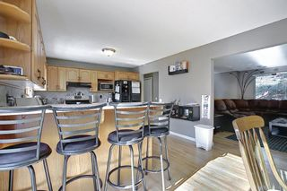 Photo 10: 12039 Candiac Road SW in Calgary: Canyon Meadows Detached for sale : MLS®# A1096218