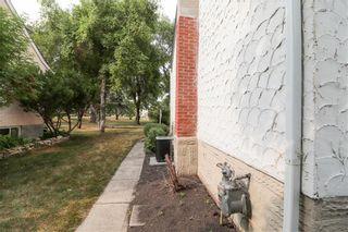 Photo 37: 195 Lyndale Drive in Winnipeg: Norwood Flats Residential for sale (2B)  : MLS®# 202119117