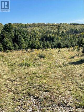 Photo 48: - Saint David Ridge in St. Stephen: Vacant Land for sale : MLS®# NB063465
