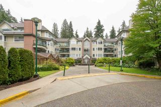 """Photo 19: 102 3690 BANFF Court in North Vancouver: Northlands Condo for sale in """"PARK GATE MANOR"""" : MLS®# R2384965"""