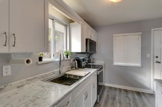 Photo 8: 33348 4TH Avenue in Mission: Mission BC House for sale : MLS®# R2556668