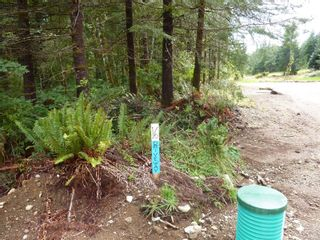 Photo 10: SL 16 950 HERIOT BAY Rd in : Isl Quadra Island Land for sale (Islands)  : MLS®# 853701