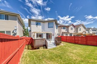 Photo 40: 23 Citadel Meadow Grove NW in Calgary: Citadel Detached for sale : MLS®# A1149022