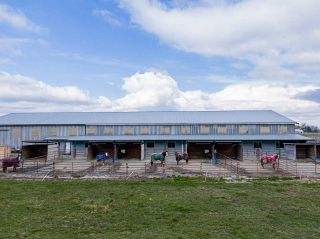 Photo 26: 1280 POWERHOUSE Road in Abbotsford: Sumas Prairie House for sale : MLS®# R2565055