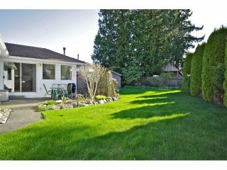 Photo 10: 1109 164A Street in Surrey: King George Corridor Home for sale ()  : MLS®# F1306486