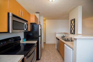 Photo 11: 1 1462 Pembina Highway in Winnipeg: Fort Garry Condominium for sale (1J)  : MLS®# 1916316