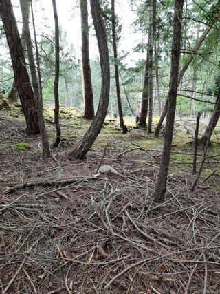 Photo 3: Lot 18 Ling Cod Lane in : Isl Mudge Island Land for sale (Islands)  : MLS®# 866366