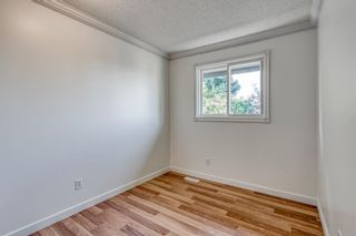 Photo 24: 135 Doverglen Place SE in Calgary: Dover Detached for sale : MLS®# A1058125