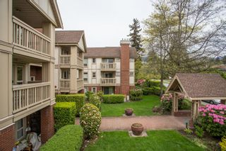 """Photo 19: 214 843 22ND Street in West Vancouver: Dundarave Condo for sale in """"TUDOR GARDENS"""" : MLS®# R2528064"""