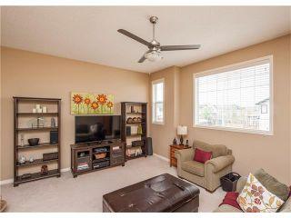 Photo 20: 160 CRANWELL Crescent SE in Calgary: Cranston House for sale : MLS®# C4116607