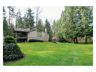 Photo 9: 12680 239TH Street in Maple Ridge: East Central House for sale : MLS®# V923370