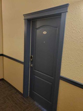 Photo 24: 235 9525 162 Avenue in Edmonton: Zone 28 Condo for sale : MLS®# E4235206