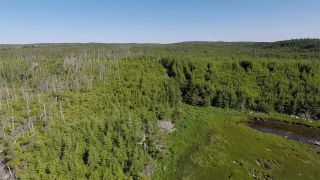Photo 20: Lot 03-1A Highway 7 in Marie Joseph: 303-Guysborough County Vacant Land for sale (Highland Region)  : MLS®# 201917799