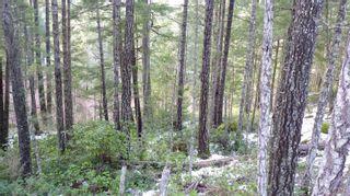 Photo 12: Lot B Mt. Matheson Rd in : Sk East Sooke Land for sale (Sooke)  : MLS®# 866391