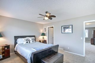 Photo 21: 117 Windgate Close: Airdrie Detached for sale : MLS®# A1084566