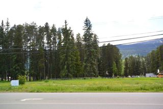 Photo 5: LOT 4-7 W 16 Highway in Smithers: Smithers - Town Land Commercial for sale (Smithers And Area (Zone 54))  : MLS®# C8038974